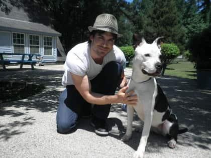 Ian Somerhalder, Dog