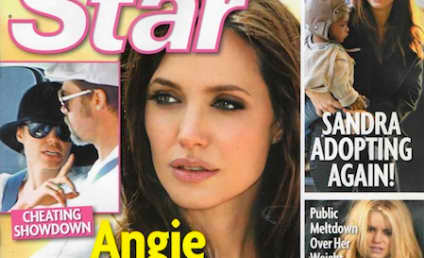 OMG: Brad Pitt Cheats on Angelina Jolie With ANOTHER Nanny!