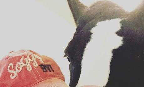 Miranda Lambert and a Horse