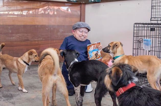 Verne Troyer and Dogs