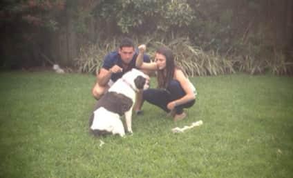 Andi Dorfman Posts Josh Murray Photo: Does He Win The Bachelorette?