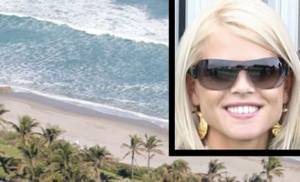 Elin Nordegren Demolishes Mansion