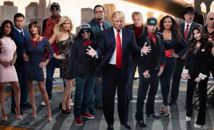 Popular The Apprentice - Season 13 & All-Star Celebrity ...