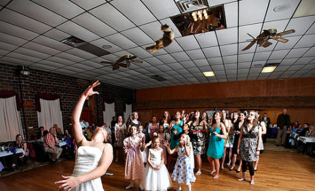 Bride Throwing Cat: Meme 9