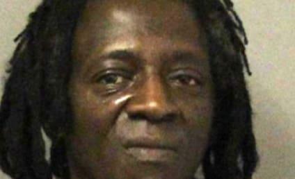 Flavor Flav Arrested for Speeding, Drug Possession En Route to Mother's Funeral