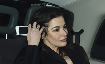 Nigella Lawson Barred from London Flight Due to Past Cocaine Use