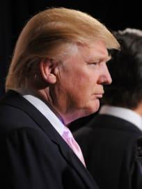 Donald Trump Profile