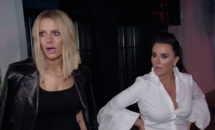 The Real Housewives of Beverly Hills Season 8 Trailer: Released!