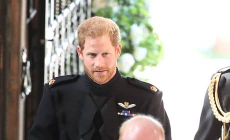 Prince Harry Arrives!