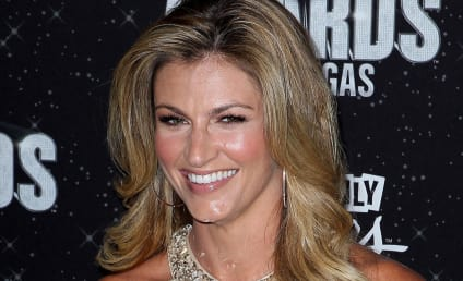 Should Erin Andrews Host The X Factor?