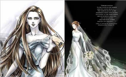 Bella Swan's Breaking Dawn Wedding Dress: Revealed!