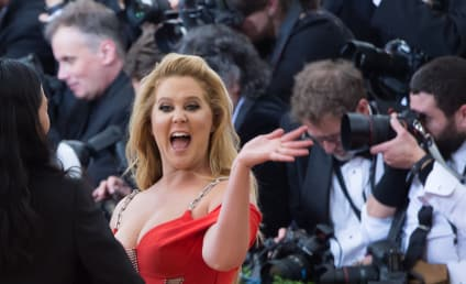 Amy Schumer Posts Very Racy Photo for Very Important Cause