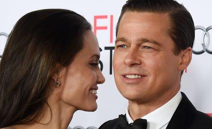 Angelina Jolie Divorces Brad Pitt, Stars React in SHOCK