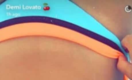 Demi Lovato torso in bikini
