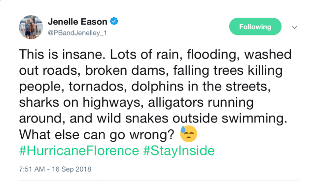 Turns Out Hurricanes Are Serious