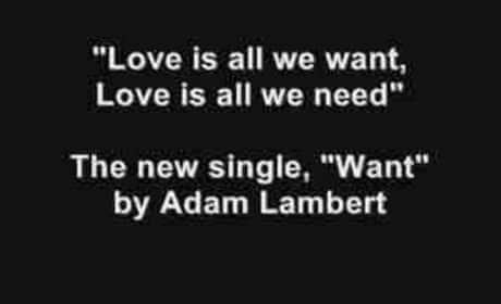 Adam Lambert, Want