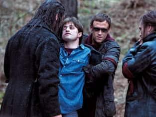 Hands on Harry