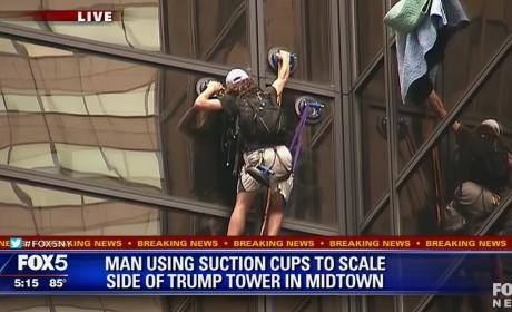 Man Climbs Trump Tower with Suction Cups