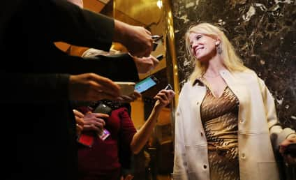 Kellyanne Conway Accused of Punching Man at Inaugural Ball