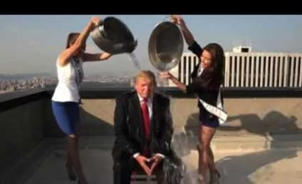 Donald Trump Takes Ice Bucket Challenge: Is the Hair Real?!?