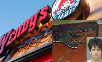 Florida Man Arrested For Throwing Alligator Into Wendy's Drive-Thru Window