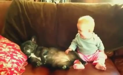 Baby Laughs at Snoring Dog, is Guaranteed to Make Your Day