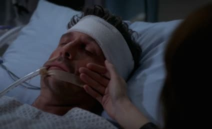 Grey's Anatomy Fans Petition for Return of McDreamy: Bring Him Back or Else!