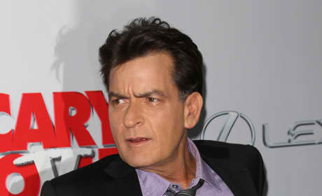 Charlie Sheen: Should he get custody of his kids?