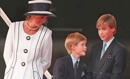 Princess Diana: William and Harry Reveal Their Tragic Final Conversation with Her