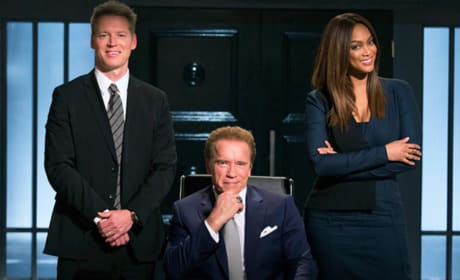 The New Celebrity Apprentice Cast
