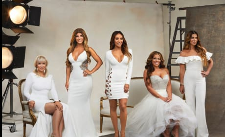 The Real Housewives of New Jersey Season 8 Cast