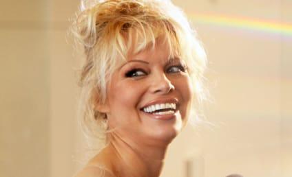 Pamela Anderson: Porn is Dangerous, Corrosive!